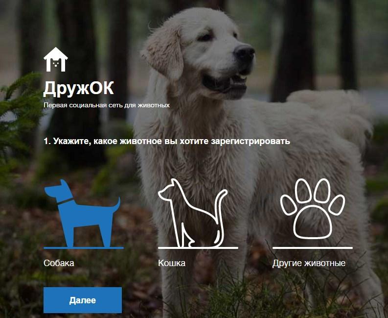 soc-set-dlya-zhivotnyx-druzhok-1
