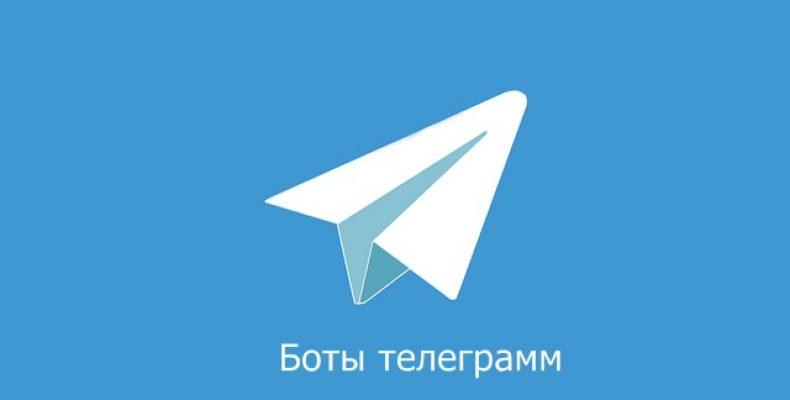 Боты телеграмм: список самых интересных
