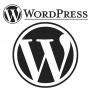WordPress: история, преимущества, недостатки, версии