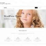 Лучшие универсальные шаблоны wordpress